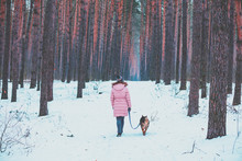 Young Woman With The Dog Walks...