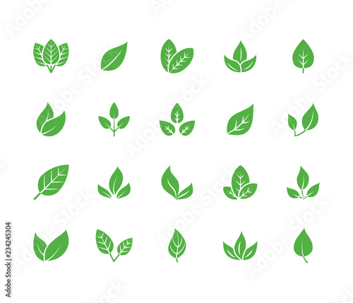 Leaf flat glyph icons. Plant, tree leaves illustrations. Signs of organic food, natural material, bio ingredient, eco emblem. Solid silhouette pixel perfect 64x64. Wall mural