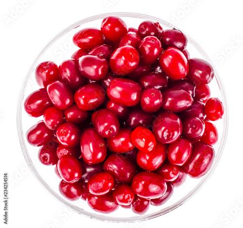 Valokuva  Red ripe berries of Cornus mas