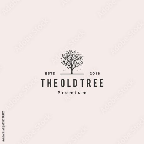 tree logo retro hipster vintage logo label Canvas Print