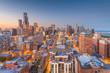 Chicago, Illinois, USA Skyline