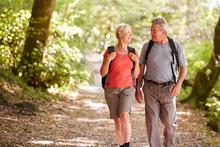 Senior Couple Hiking Along Woo...