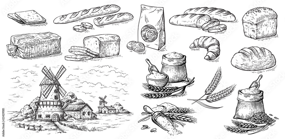 Fototapety, obrazy: collection of natural elements of bread and flour mill sketch vector illustration