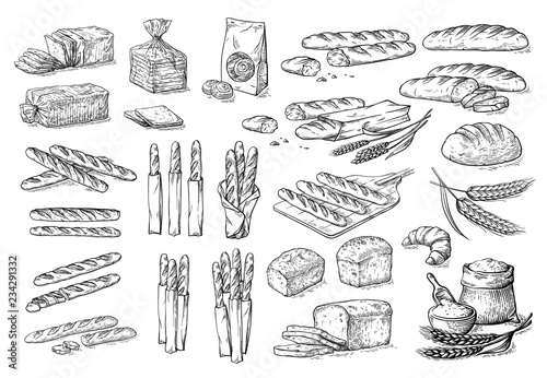 Fotografiet collection of natural elements of bread and flour sketch vector illustration