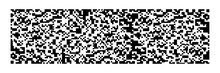 Horizontal Black Qr Code On White For Pattern And Background,vector Illustration