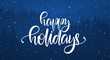 Vector illustration: Handwritten elegant calligraphic brush lettering of Happy Holidays on blue forest background