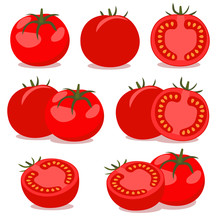 Vector Tomato, Collection Of Vector Illustrations.