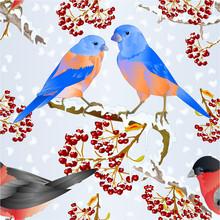 Seamless Texture Birds Bluebir...