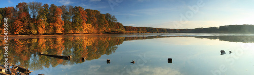 Photo Fishpond in autumn