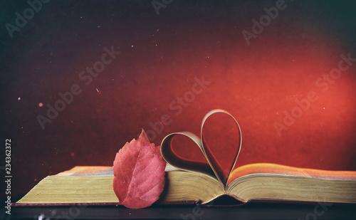 Fototapeta Libro e atmosfera autunnale