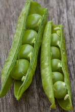 Close Up Of Two Open Pea Pods With Peas