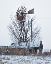 Windmill Barn Tree In The Snow
