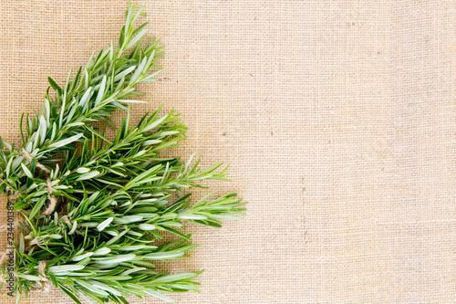 Fresh rosemary herb bundles on beige natural burlap background Canvas Print