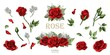Red roses hand drawn illustration elements colored set
