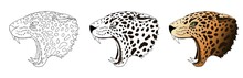 Vector Angry Leopard Portrait....