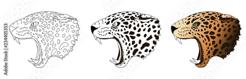 Vector angry leopard portrait Poster Mural XXL
