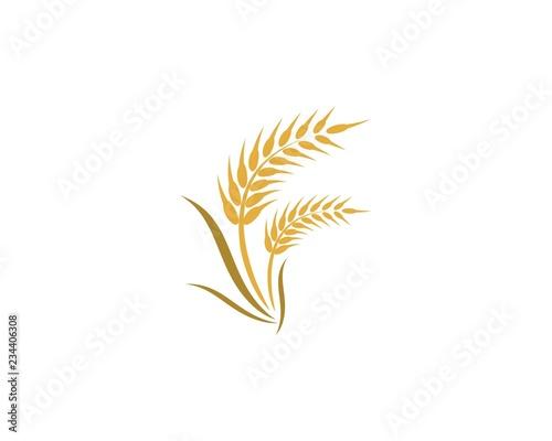 Foto Wheat logo icon illustration