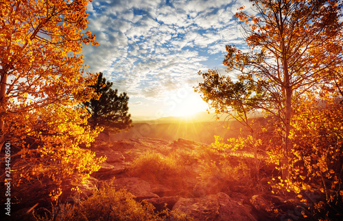 Fotobehang Baksteen Autumn season