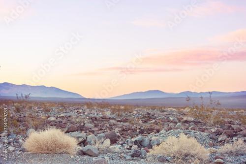 Nevada landscapes