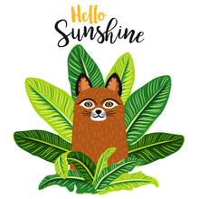 Cute Brown Cat Sitting Among Greenery. Summer Print With Fluffy Kitten And Throne Of Tropical Leaves. Hello Sunshine Design For Greeting Card, Invite, Poster, T-shirt, Children Illustration. Vector