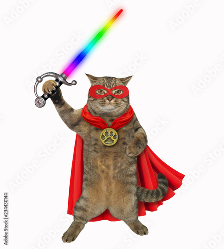 Photo  The super hero cat in a red cloak and a mask holds a glowing sword