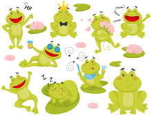 Flat Vector Set Of Frog In Dif...