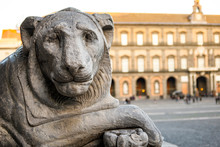 Lion Statue In Piazza Del Plebiscito In Naples With The Royal Palace In The Background. Italy