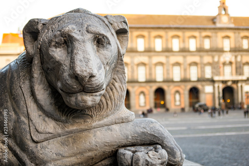 Fotografia, Obraz  lion statue in Piazza del Plebiscito in Naples with the royal palace in the background