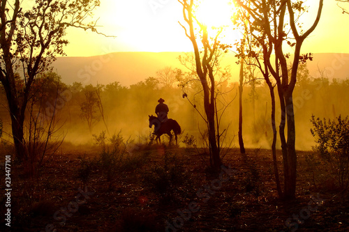 Garden Poster Brown The Lone Horseman - Kimberley Cattle Muster