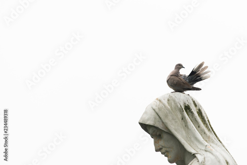 Photo  A dove perched on the image of the Virgin Mary, in the Sanctuary of Lourdes in F
