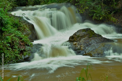 Foto op Canvas waterfall in the forest