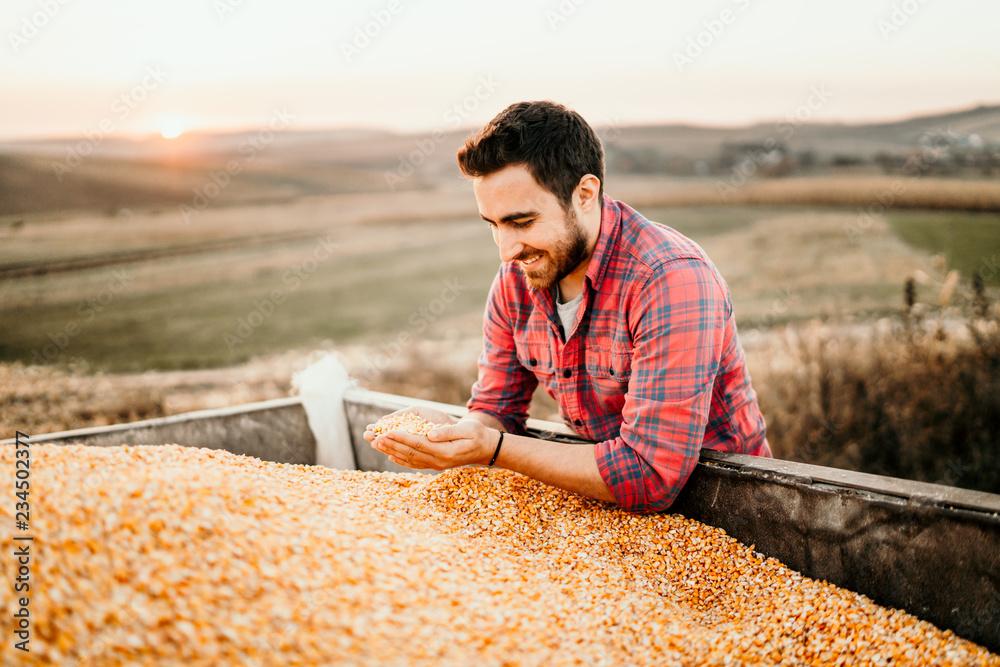 Fototapety, obrazy: Portrait of harvest details - Farmer enjoying harvest and smiling