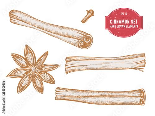 Fototapeta Vector collection of hand drawn pastel cinnamon obraz