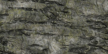 Rocky Cliff Backgrounds. Nature Stone Texture With Detail Cracks.