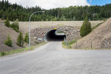 Photo Of An Empty Road Underpa...