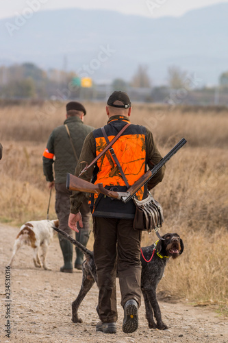 Hunter hunting with dogs in nature