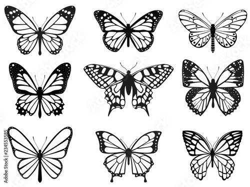 Photo sur Toile Papillons dans Grunge Different butterflies set. Vector illustration
