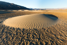 View Of Mesquite Flat Sand Dun...