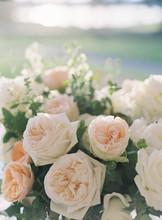 Closes Up Of Roses At A Wedding Reception