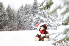 Teddy Bear In A Snowy Forest. ...