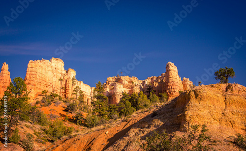 Fotobehang Natuur Park Colorful Bryce Canyon in Utah