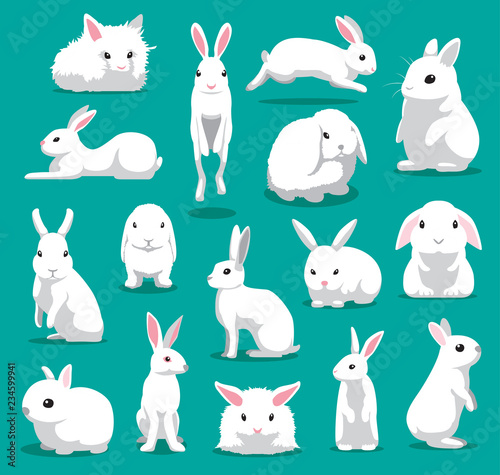 Photo Cute White Rabbit Poses Cartoon Vector Illustration
