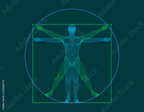Obraz Vitruvian man. Wireframe human body. Vector outline illustration - fototapety do salonu