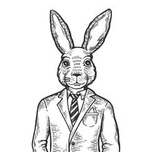 Rabbit Hare Businessman Engrav...