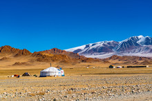 Autumn View Of Mongolian Ger O...