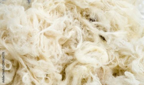 Fototapeta Pile of new wool closeup