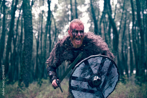 fierce viking warrior wounded in battle Canvas Print