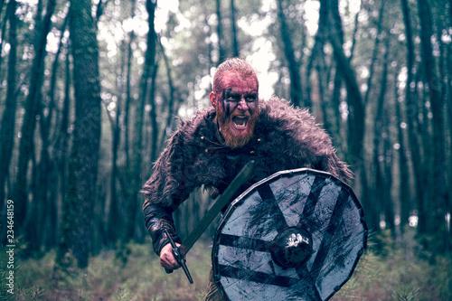Fotografía  fierce viking warrior wounded in battle