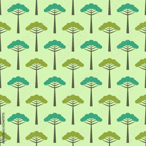 Photo Seamless araucaria pattern