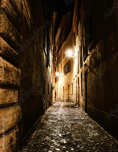Canvas Prints Narrow alley Alleyway in Rome at night. Vertical shot